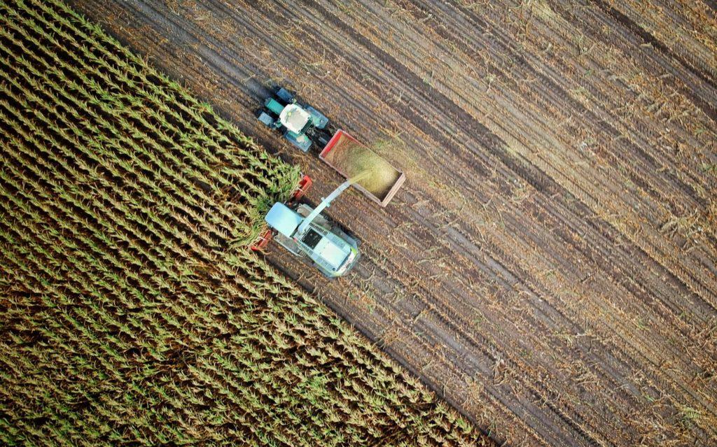 how-to-harvest-hemp-biomass-kush-marketplace-wholesale-combine